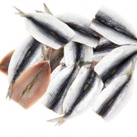 Sardine Butterfly Fillets